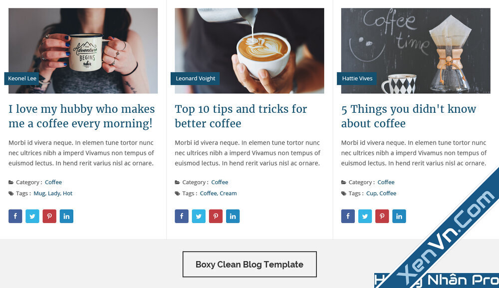 Blog Designer PRO for WordPress-2.jpg