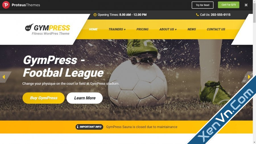 GymPress - WordPress theme for Fitness and Personal Trainers.jpg